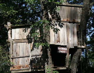 The old tree house built by David Fausel.